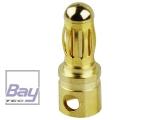 Goldkontakt Stecker kurz, 3,5mm