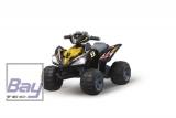 Ride-On Quad 12V